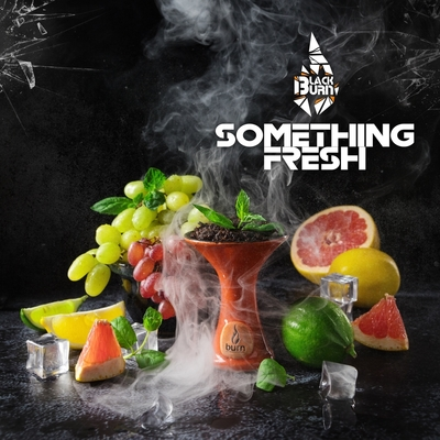 Табак для кальяна Black Burn 20 гр. - Something Fresh (Дюшес)